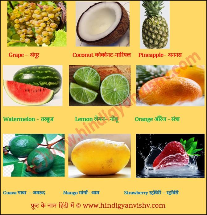 Fruits Names in Hindi, English फलो के नाम - Hindi Gyan Vishv