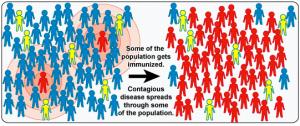 Herd Immunity - The Vaccine Mom